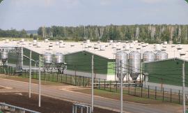 Свинокомплекс Омский бекон с. Калинино - изоляция инженерных систем